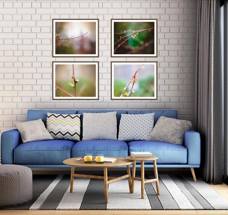 framed nature and landscape photography nature photo gift pro